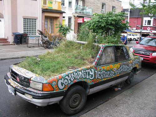 Toronte, Kanadoje, galima rasti ir štai tokių stebuklų, turinčių tikslą įkvėpti žmones kurti daugiau žalių erdvių.